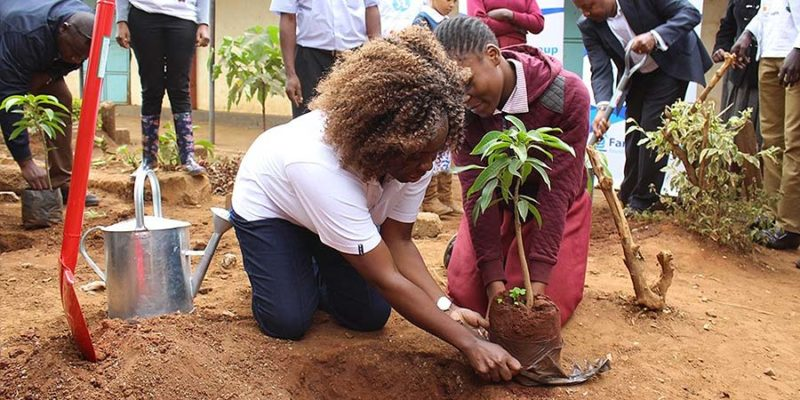 Family Group Foundation Plants 1000 Trees at Baba Dogo Primary School